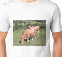 Cows in field on El Camino, Spain Unisex T-Shirt
