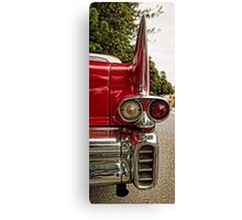 Look at those fins Canvas Print