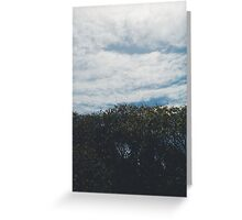 Sky x Tree Greeting Card