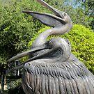 Pelican in Bronze by rosaliemcm