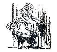 Alice in Wonderland by rachel-art