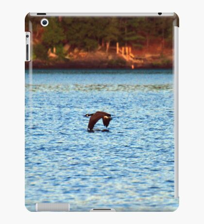Sundown Goose iPad Case/Skin