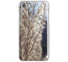 Plant in the sun iPhone Case/Skin