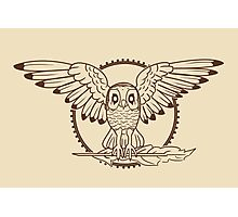 Mystical Owl Photographic Print