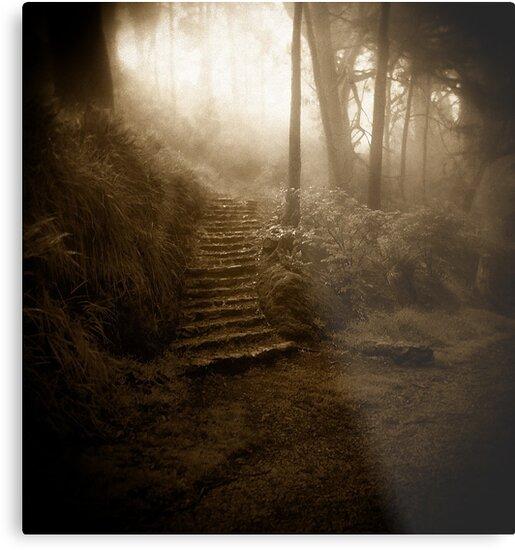 Mountain Steps (Holga) by Richard Mason