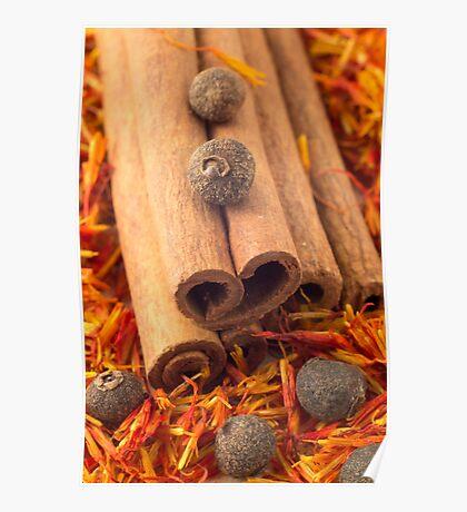 Macro view of the cinnamone, peppercorn and saffron Poster