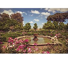 Garden of Eden Photographic Print