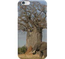 Africa's Icons - Baobab Tree, Termite Mound & Grey Elephant iPhone Case/Skin