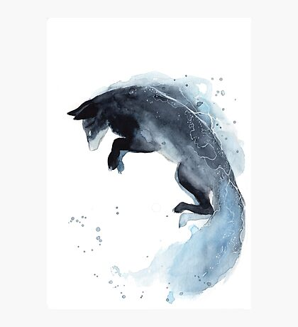 Water Fox Photographic Print