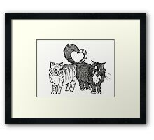 Cats in Love Framed Print