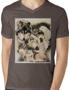 Spirit Catcher Mens V-Neck T-Shirt