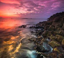 Giant's Causeway  Co Antrim  Northern Ireland by Zdrojewski