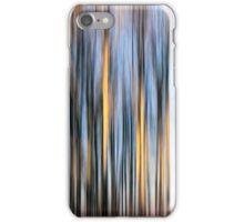 Sunset Paths iPhone Case/Skin