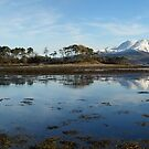 Ben Nevis from Inverscaddle Bay on the shores of Loch Linnhe. by John Cameron
