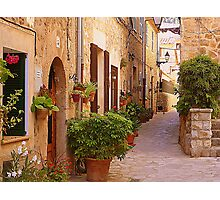 The Brown Shuttered Houses Of Valldemossa Photographic Print