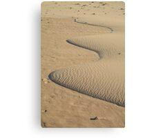 Miniature Dune Landscape Canvas Print