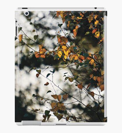 Last days of Autumn iPad Case/Skin