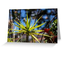 Spike Plant - Nature Photography  Greeting Card