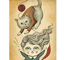 Kitty Knitting Photographic Print
