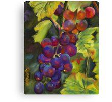Grapevine by Chris Brandley Canvas Print