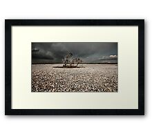 The Lonely Trees. Framed Print