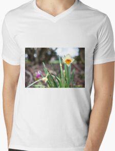 Spring time is here Mens V-Neck T-Shirt