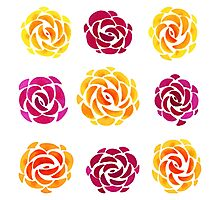 Mixed Rose Flower Pattern Photographic Print