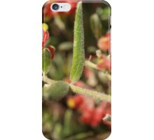 Grevillea saccata iPhone Case/Skin