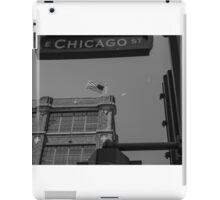 The See Collection iPad Case/Skin