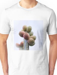 Prickly Pear Fruits Unisex T-Shirt