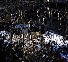 Water Sculpture in the Sculpture Garden in Canberra/ACT/Australia (3) by Wolf Sverak