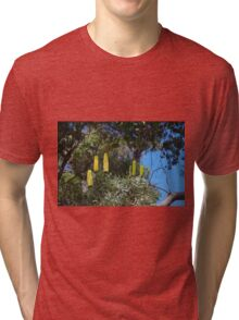 Six Of The Best (Banksia attenuata) Tri-blend T-Shirt
