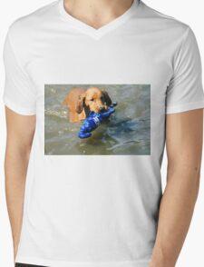 Lorelei- Water Fetching Rocks Mens V-Neck T-Shirt