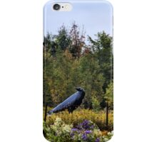 Counting Crows iPhone Case/Skin