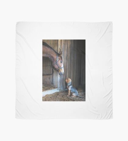 Two Friends- 2015 Dover Saddlery contest winer Scarf