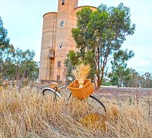 The Old Wheat Silos..... vintage bicycle by mitpjenkeating