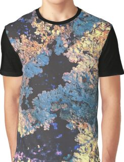 Lichens In The Sun Graphic T-Shirt