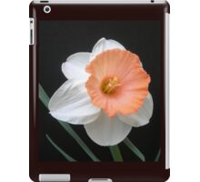 Soft Orange and White Daffodil iPad Case/Skin
