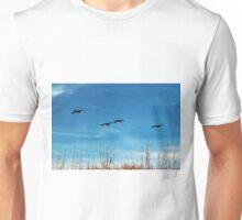 Flying Lessons Unisex T-Shirt