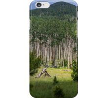 Aspens and Meadow iPhone Case/Skin