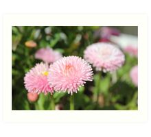 Pretty and Pink! Art Print