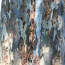 Bark patterns by Gillian Anderson LAPS, AFIAP