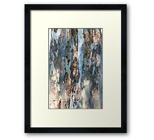 Bark patterns Framed Print
