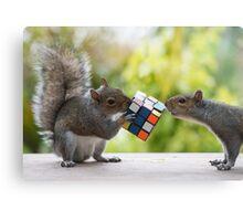 Squirrelisimo vs rubicks cube Canvas Print