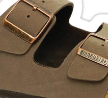 Future Sandals: Birkenstocks Sticker