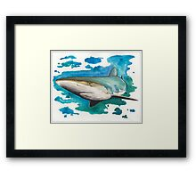 Dusky Shark Framed Print
