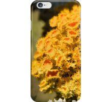 Fruticose Lichen iPhone Case/Skin
