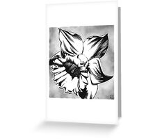 Spring Daffodil - Ink drawing Greeting Card