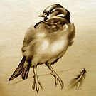 Sparrow Bird With Feather by Patricia Howitt