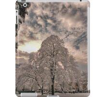 Winter white iPad Case/Skin